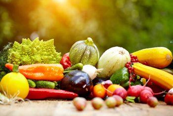 Tenha mais energia e disposição com essas dicas de alimentação!